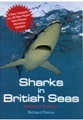 Sharks in British Seas.